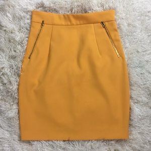 H&M Golden Zipper Skirt